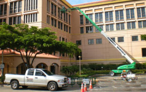 Mold cleanup off the walls of 6-story building