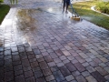 These pavers, view #2, are now being pressure washed with our rotary surface cleaner